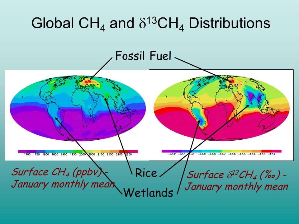 Global CH4 and 13CH4 Distributions