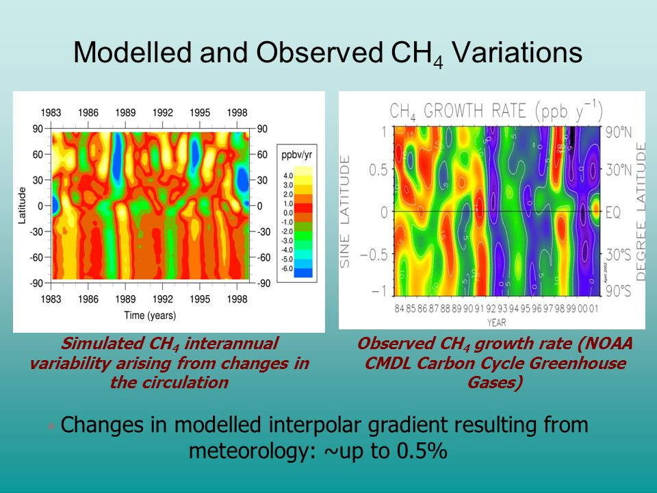 Modelled and Observed CH4 Variations