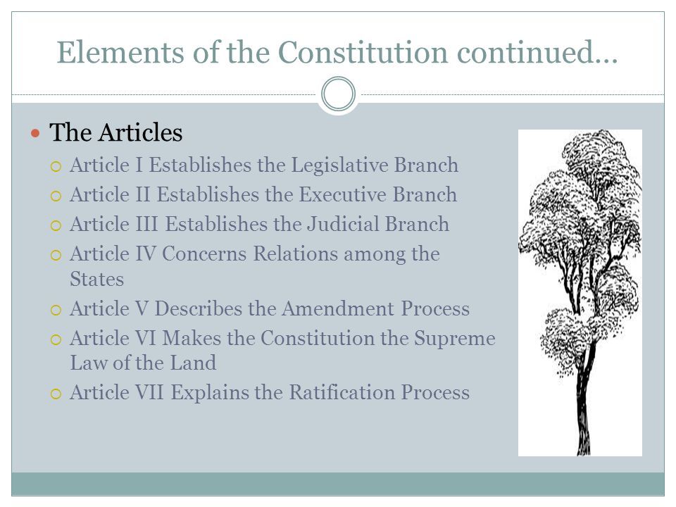 Elements of the Constitution continued…