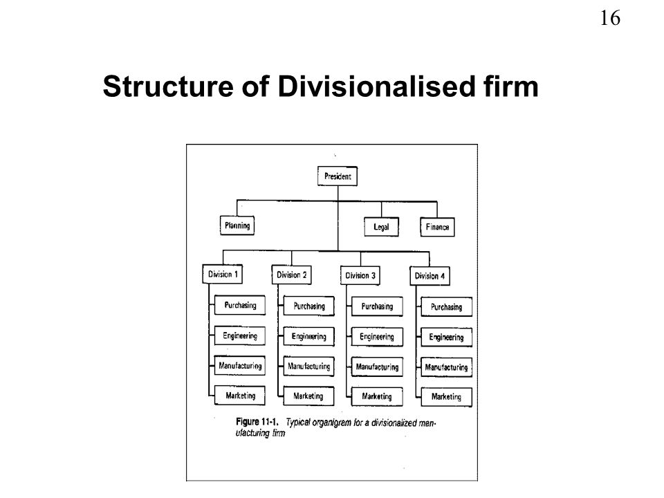 Structure of Divisionalised firm