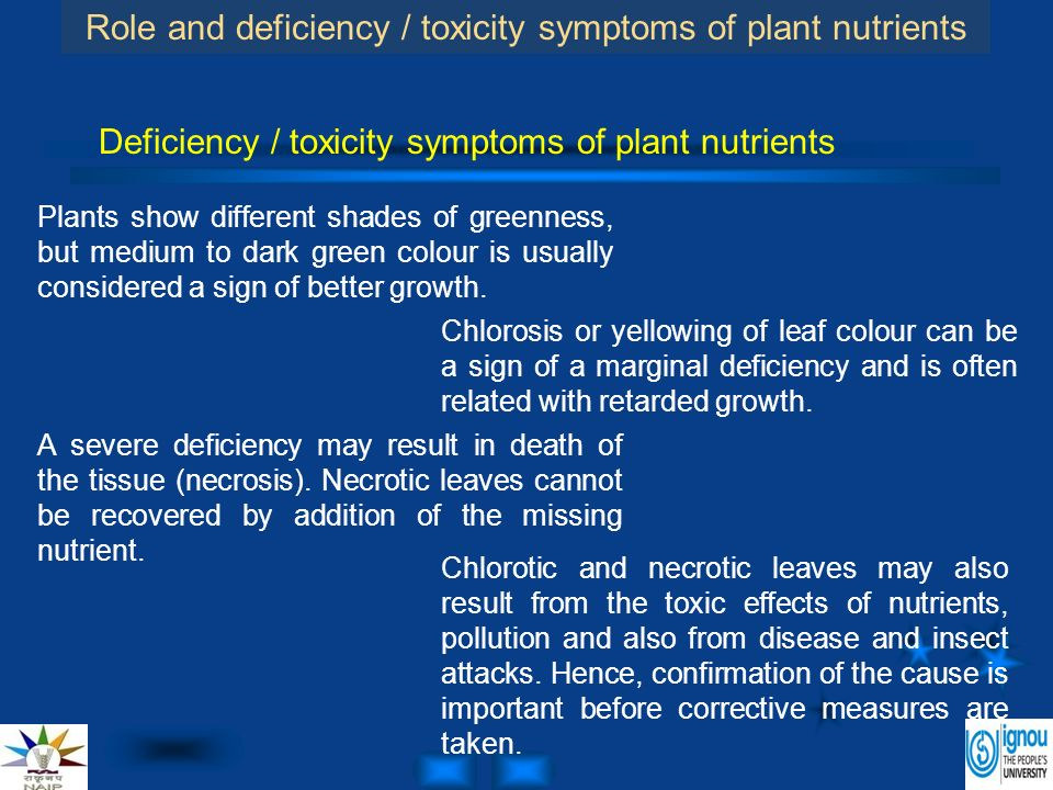 the effects of nutrient deficiency on various measures of plant growth It can be difficult to recognize symptoms of nutrient disorders because they are often subtle or not unique to the cause  plant growth is slowed, and .