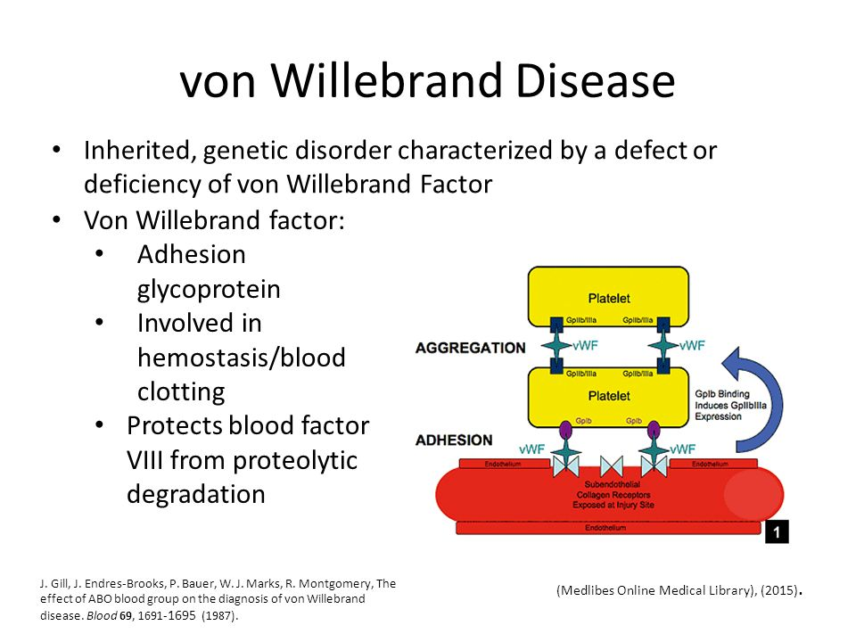 Molecular Basis for ABO Blood Types - ppt video online