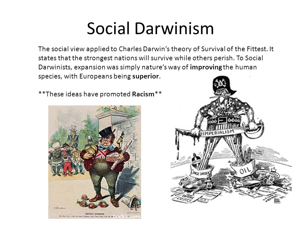 Imperialism and Social Darwinism Based on the Theory