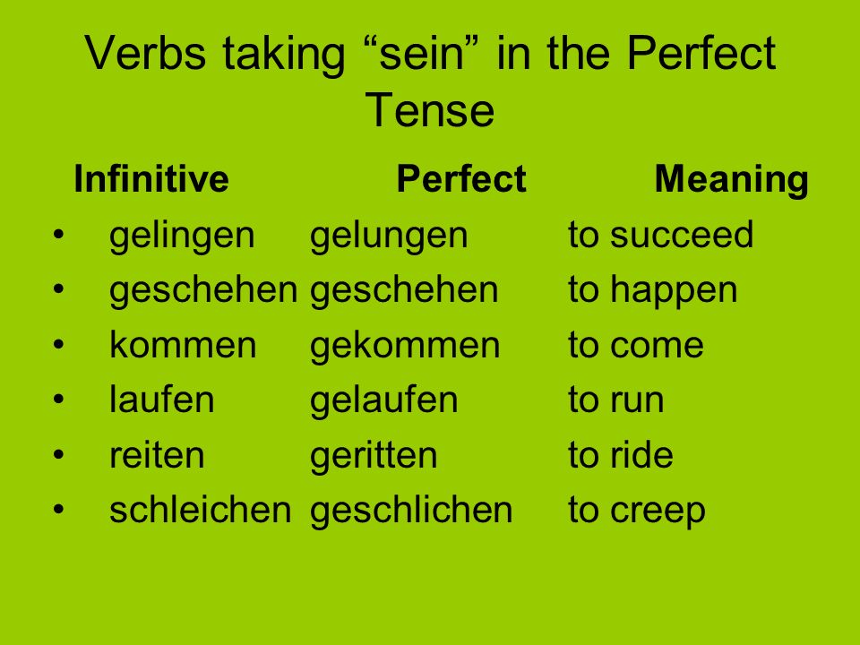 Verbs taking sein in the Perfect Tense
