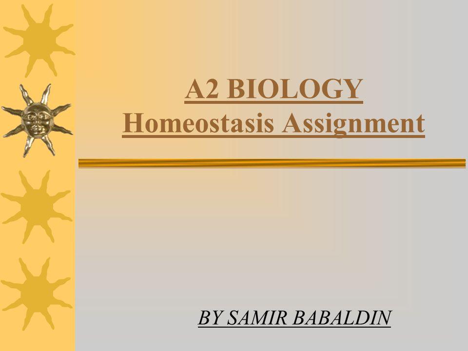 A2 BIOLOGY Homeostasis Assignment