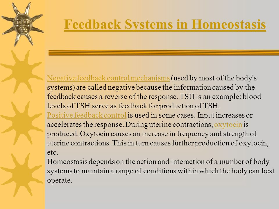 Feedback Systems in Homeostasis