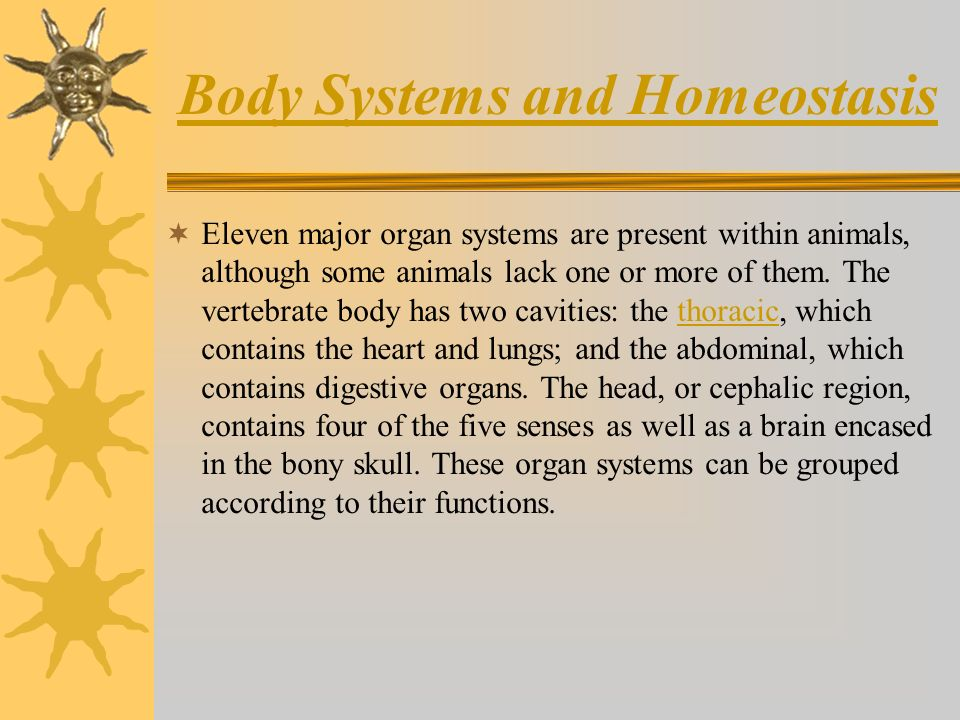 Body Systems and Homeostasis