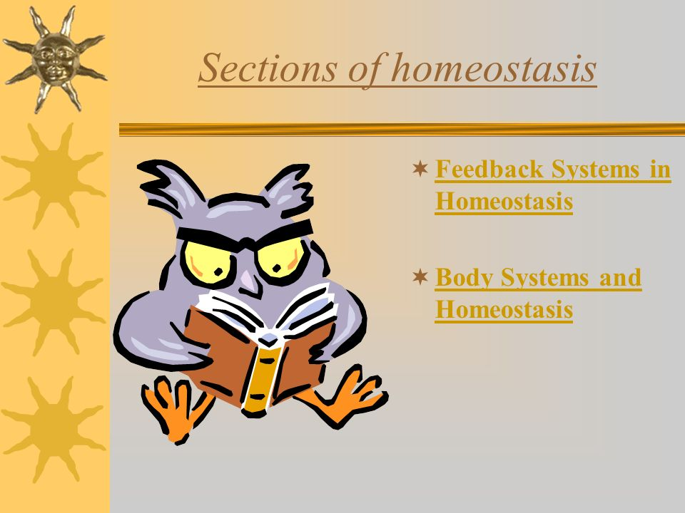 Sections of homeostasis