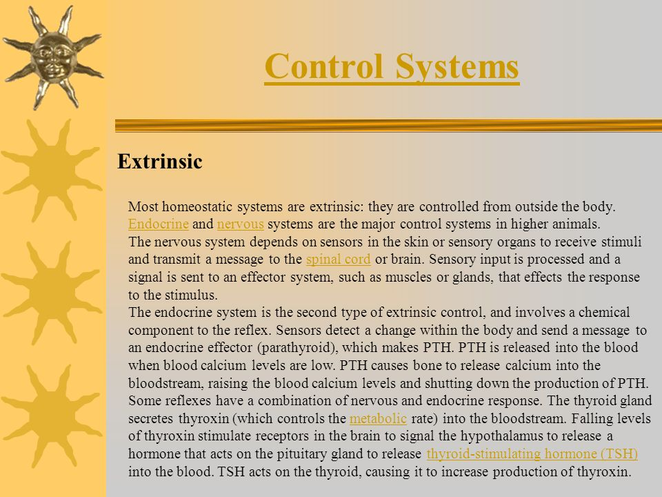 Control Systems Extrinsic