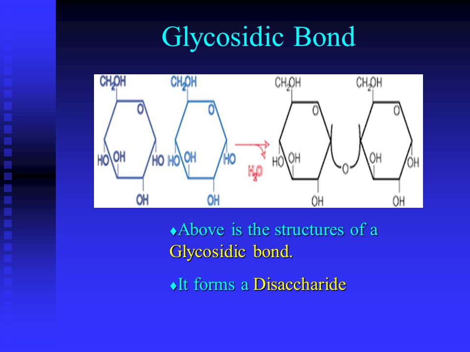 Glycosidic Bond Above is the structures of a Glycosidic bond.