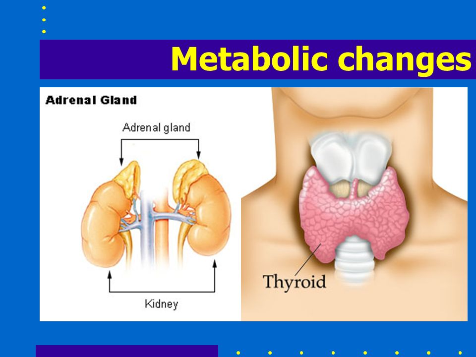 Metabolic changes