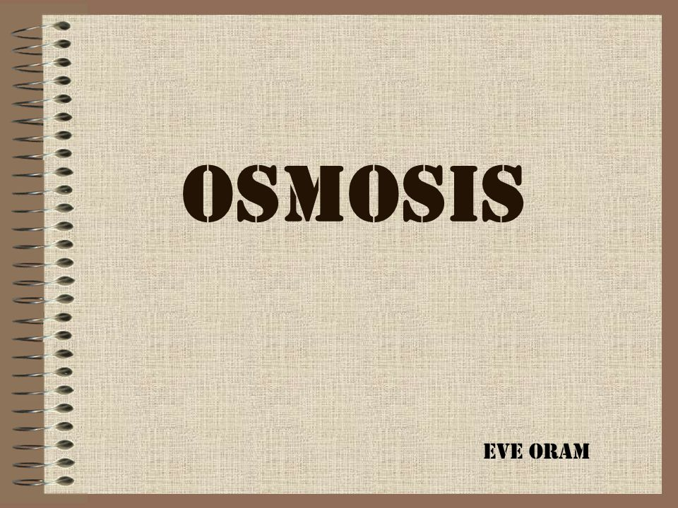 OSMOSIS Eve Oram