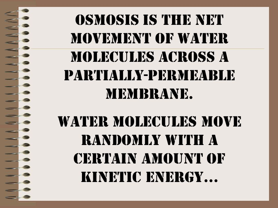 Water molecules move randomly with a certain amount of kinetic energy…
