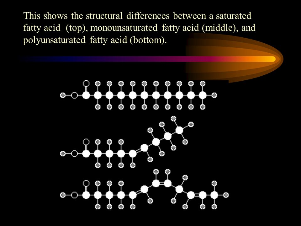 This shows the structural differences between a saturated fatty acid (top), monounsaturated fatty acid (middle), and polyunsaturated fatty acid (bottom).