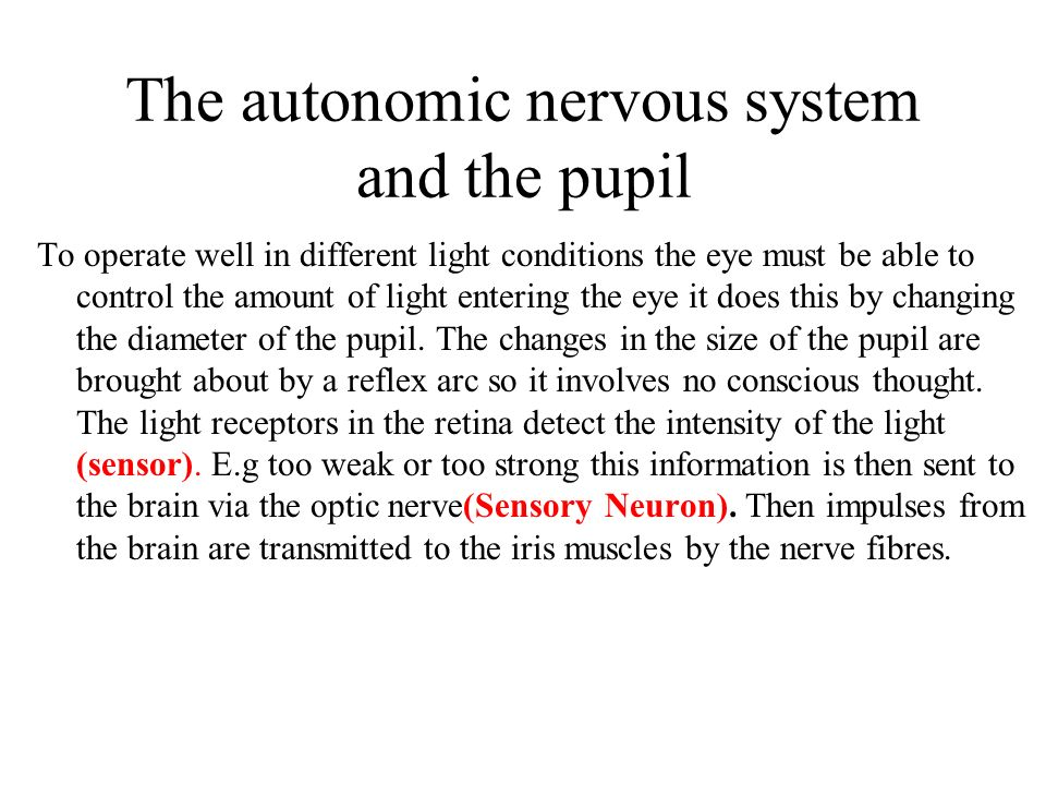 The autonomic nervous system and the pupil
