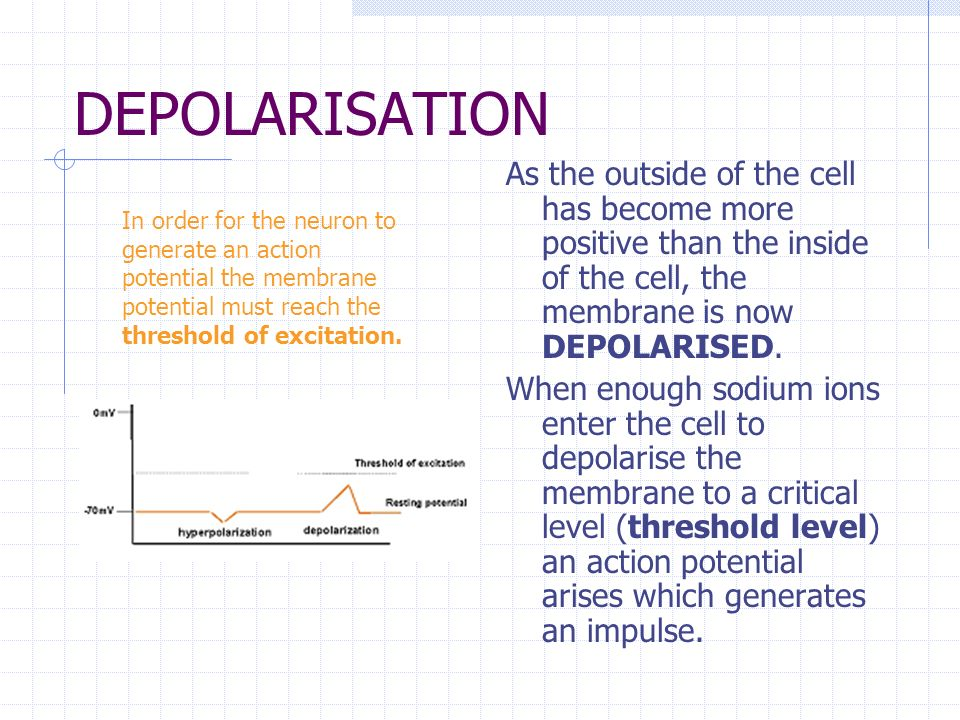 DEPOLARISATION As the outside of the cell has become more positive than the inside of the cell, the membrane is now DEPOLARISED.