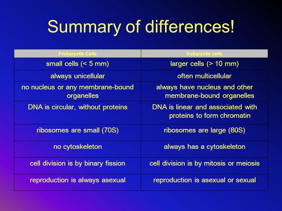 Summary of differences!