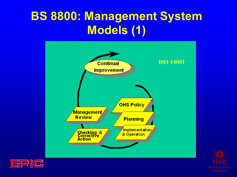 BS 8800: Management System Models (1)