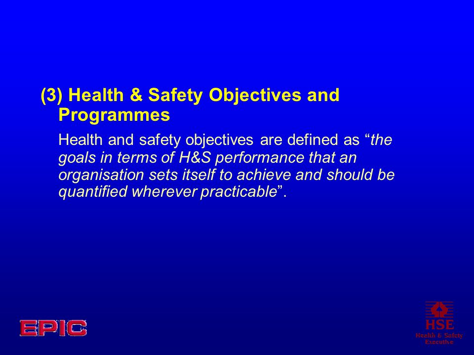 (3) Health & Safety Objectives and Programmes