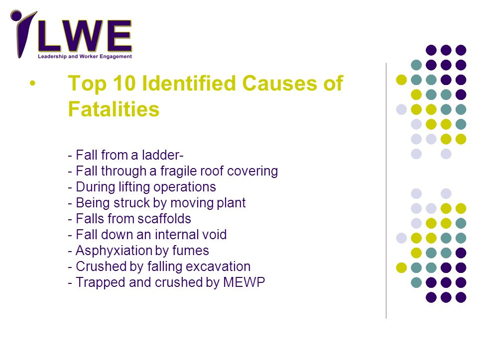 Top 10 Identified Causes of Fatalities
