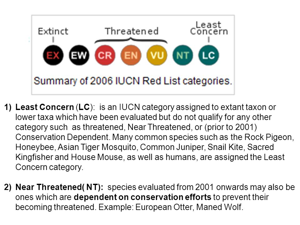 Least Concern (LC): is an IUCN category assigned to extant taxon or lower taxa which have been evaluated but do not qualify for any other category such as threatened, Near Threatened, or (prior to 2001) Conservation Dependent. Many common species such as the Rock Pigeon, Honeybee, Asian Tiger Mosquito, Common Juniper, Snail Kite, Sacred Kingfisher and House Mouse, as well as humans, are assigned the Least Concern category.
