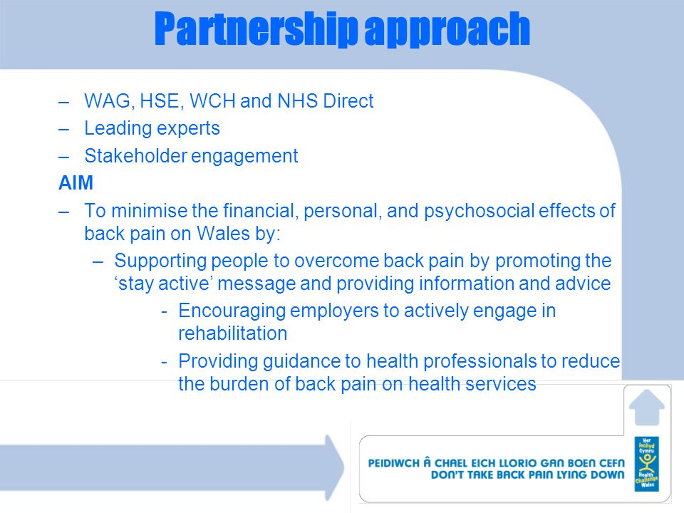 Partnership approach WAG, HSE, WCH and NHS Direct Leading experts
