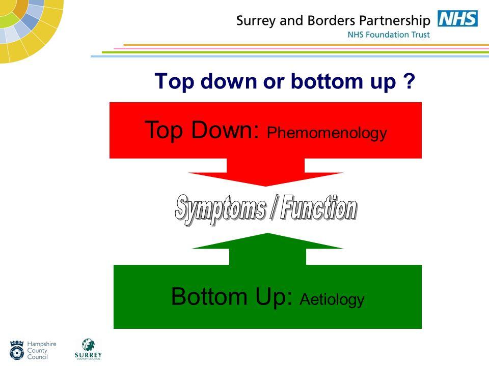 Top Down: Phemomenology