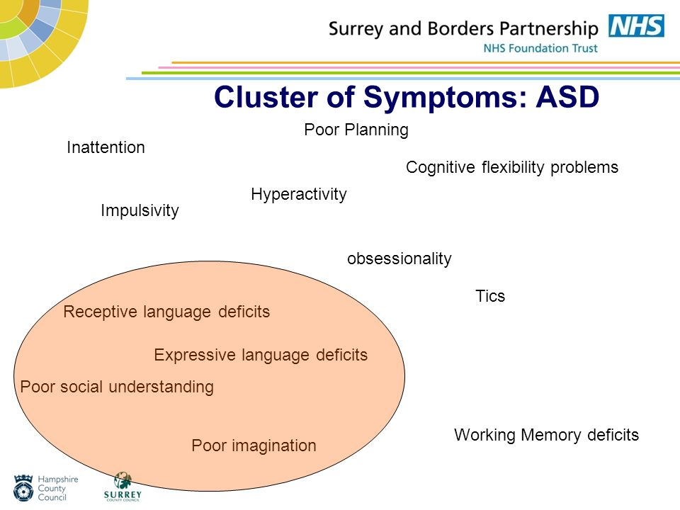 Cluster of Symptoms: ASD