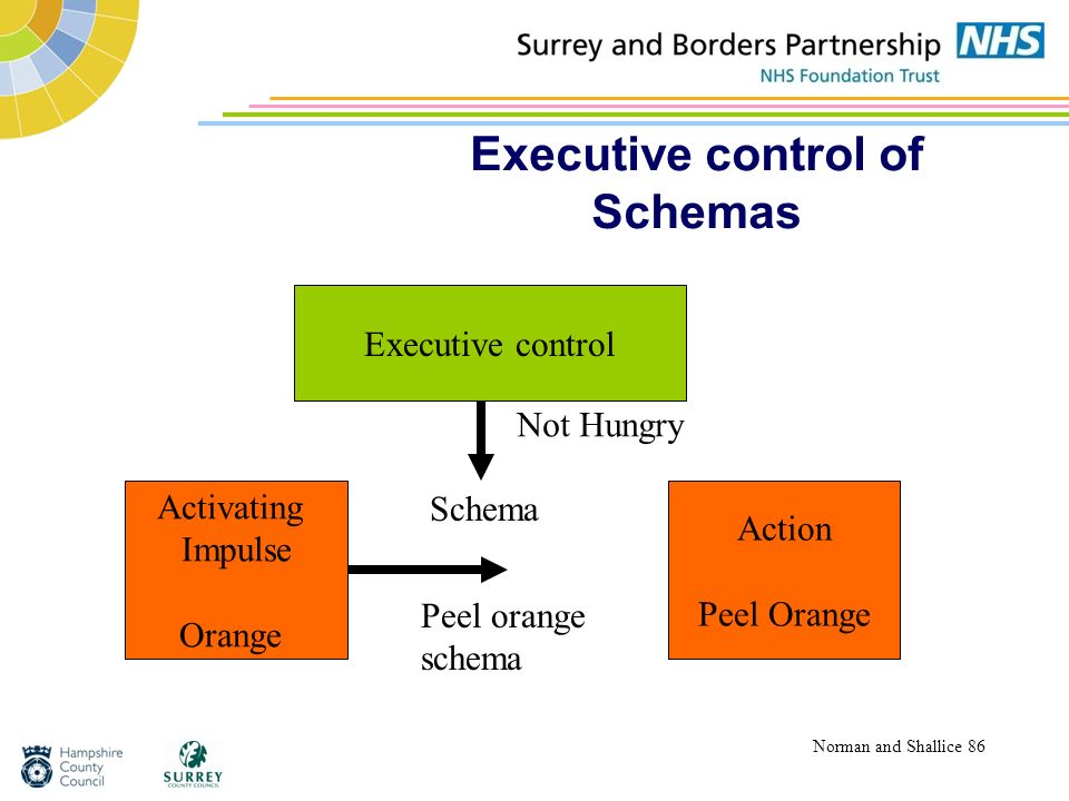 Executive control of Schemas