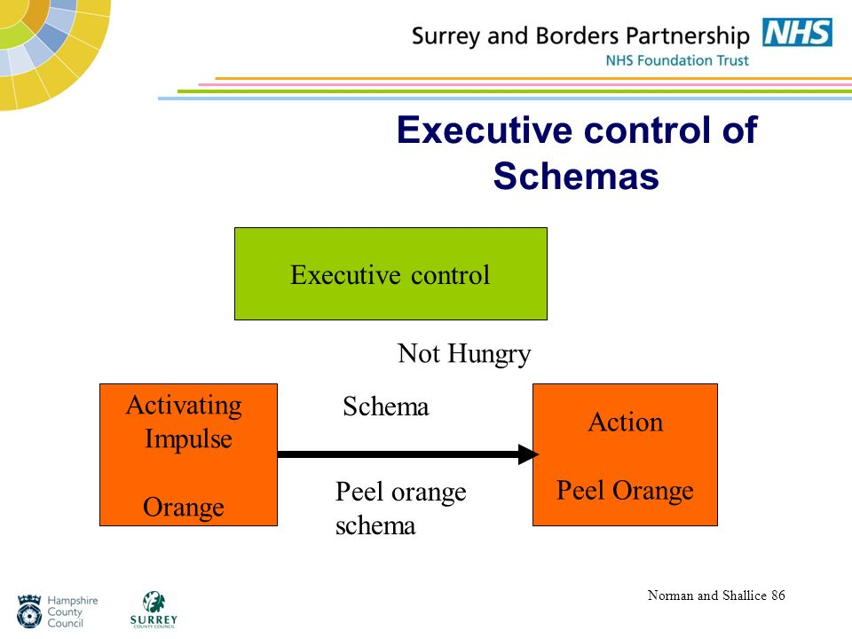 Executive control of Schemas