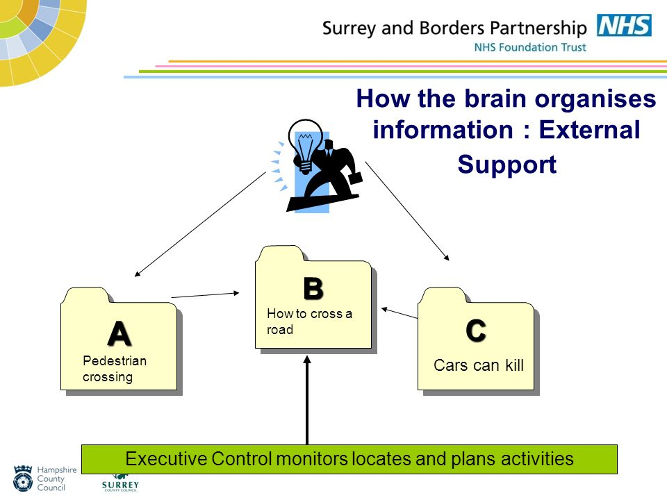 How the brain organises information : External Support