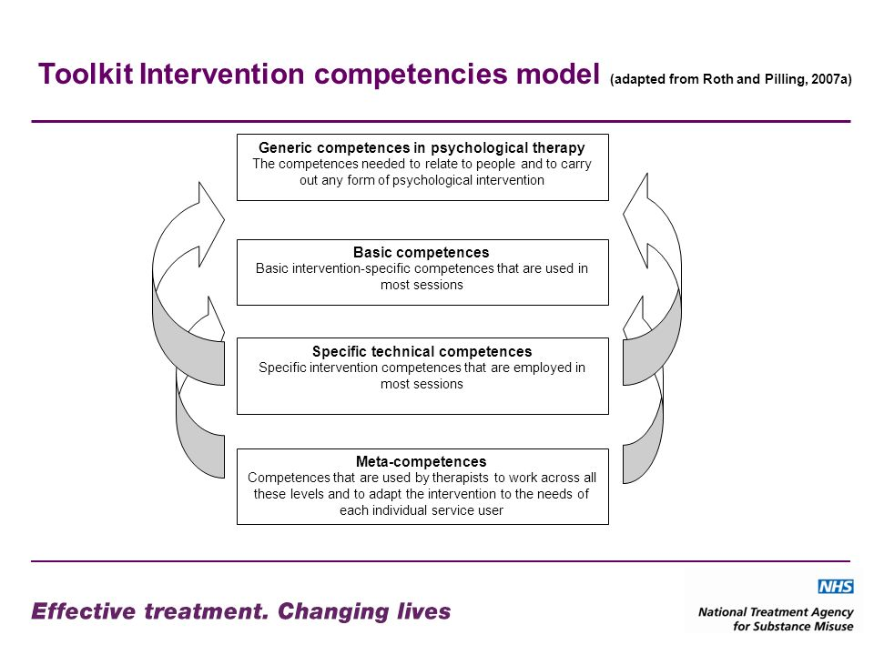 Toolkit Intervention competencies model (adapted from Roth and Pilling, 2007a)