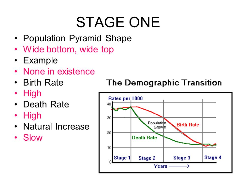 STAGE ONE Population Pyramid Shape Wide bottom, wide top Example