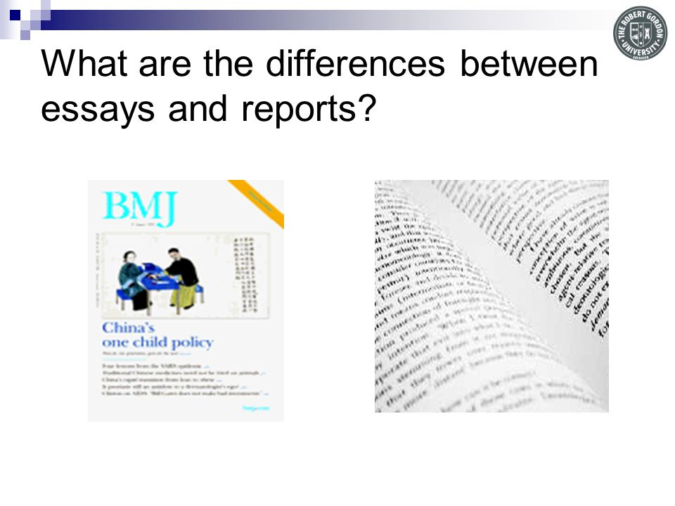 What are the differences between essays and reports