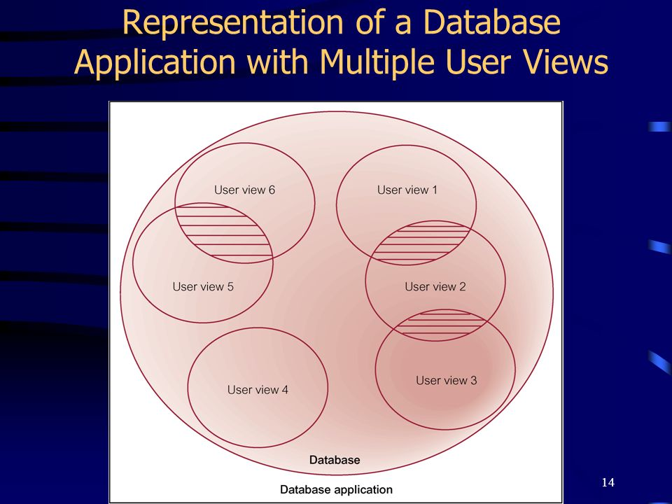 Representation of a Database Application with Multiple User Views