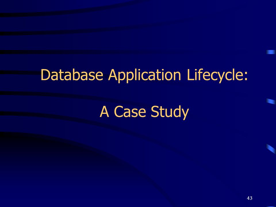 Database Application Lifecycle: A Case Study