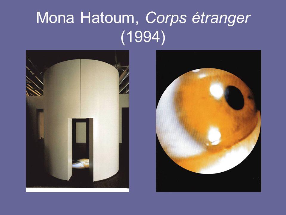 Mona Hatoum, Corps étranger (1994)