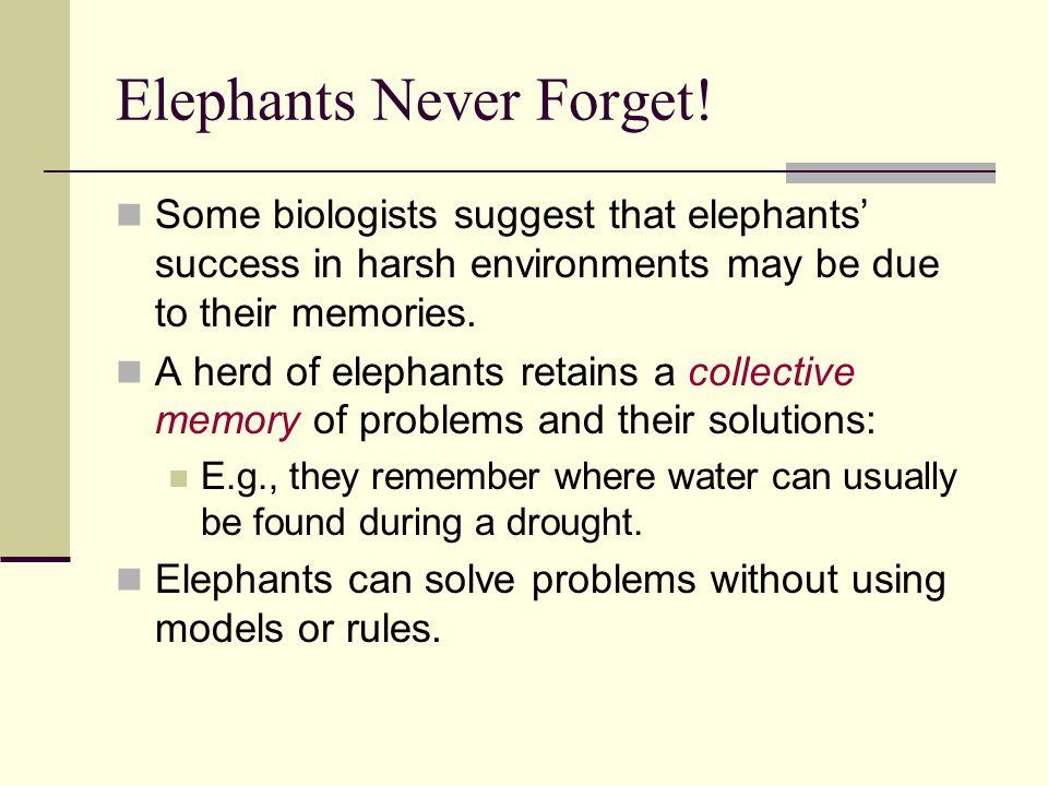 Elephants Never Forget!