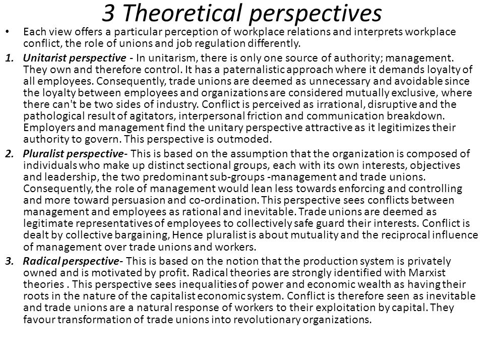 3 Theoretical perspectives