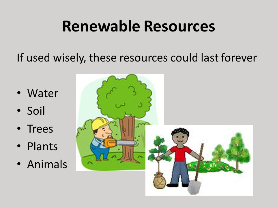 How To Use Natural Resources Wisely