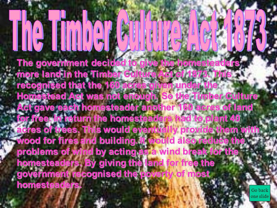 The Timber Culture Act 1873
