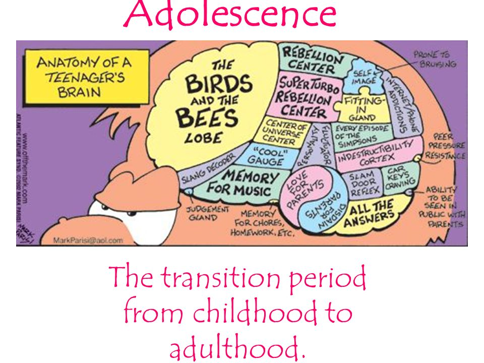 "Transition from adolescence to adulthood: the challenges to establish ""transition psychiatry"""