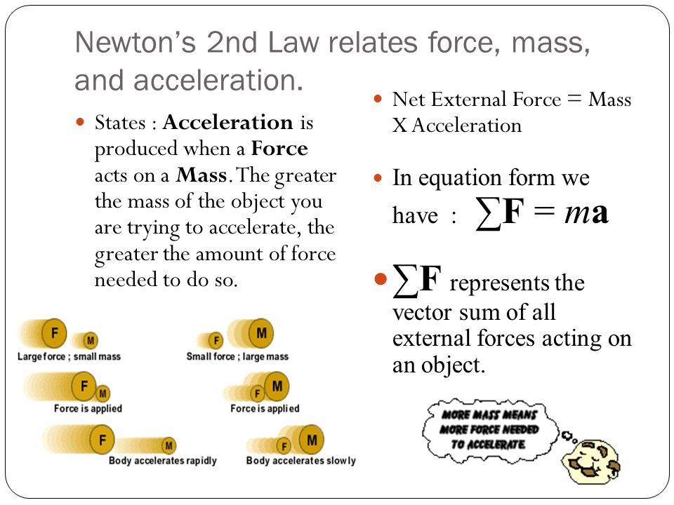 Forces and the Laws of Motion ppt download – Force Mass X Acceleration Worksheet