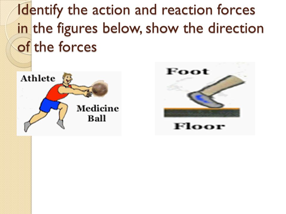Identify the action and reaction forces in the figures below, show the direction of the forces