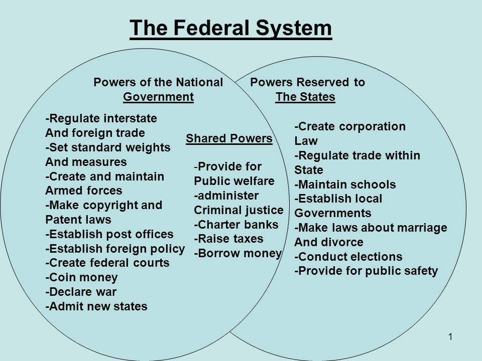 federal federal government system