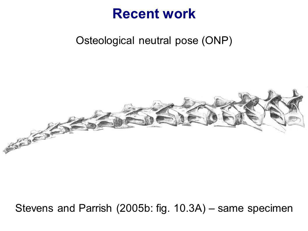 Recent work Osteological neutral pose (ONP)‏