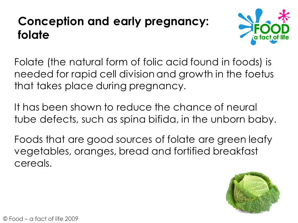 Conception and early pregnancy: folate