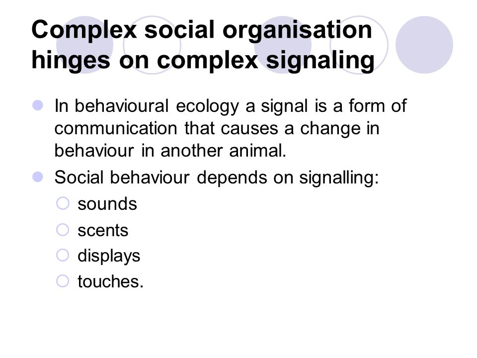 Complex social organisation hinges on complex signaling
