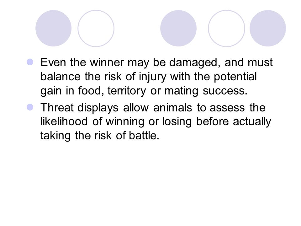 Even the winner may be damaged, and must balance the risk of injury with the potential gain in food, territory or mating success.