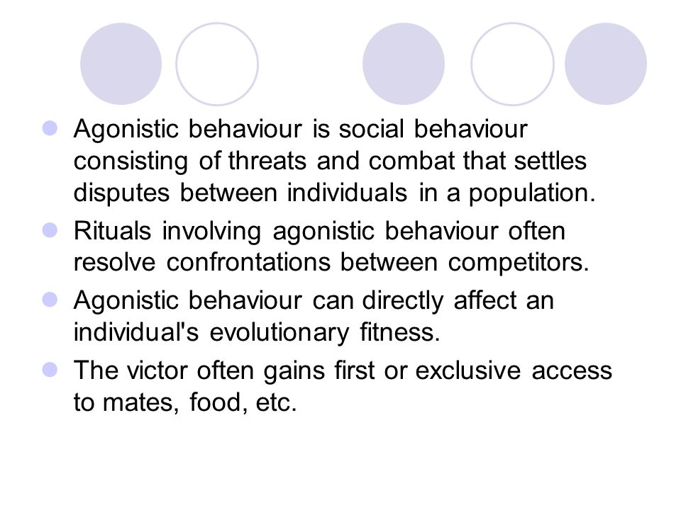 Agonistic behaviour is social behaviour consisting of threats and combat that settles disputes between individuals in a population.